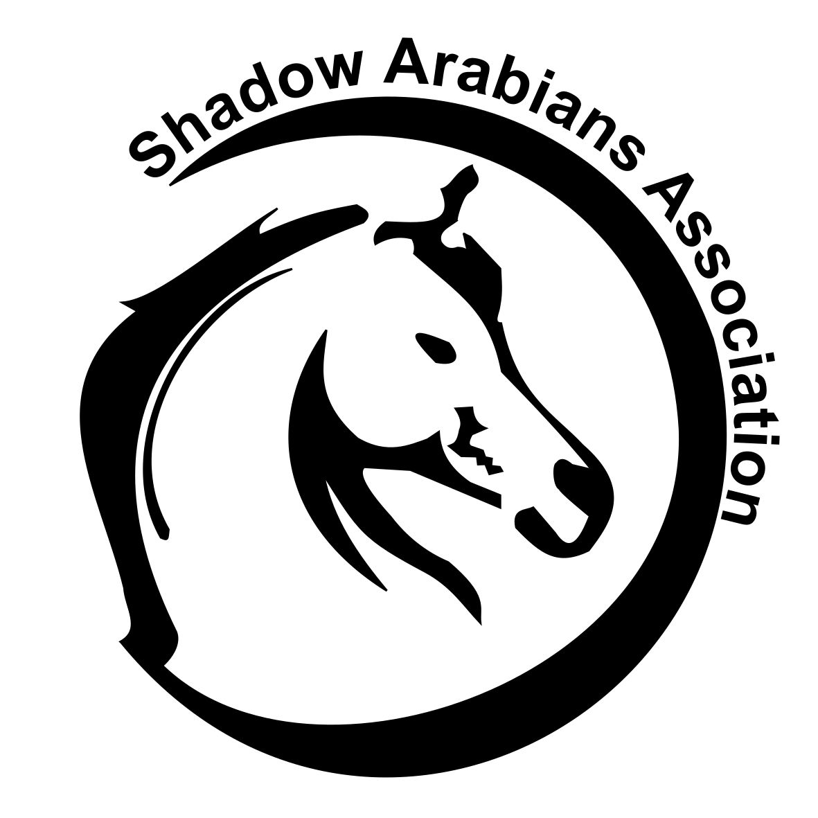 EL SHADOW ARABIANS COURSES D'ENDURANCE EQUESTRE